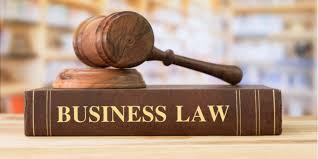 DIS2020   DPB30073 BUSINESS LAW